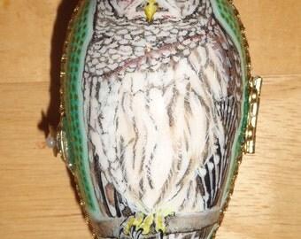 Goose Egg Box - Barred Owl
