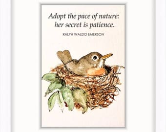 Bird or nature lover gift! 5 x 7 robin print, nature watercolor illustration stillness Ralph Waldo Emerson quote bird nest | 5x7 in. print