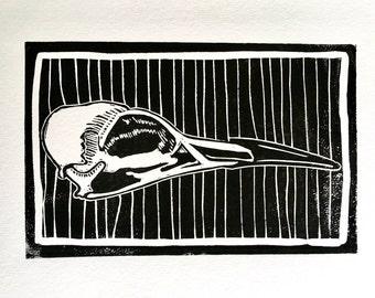 Guillemot Skull Linocut
