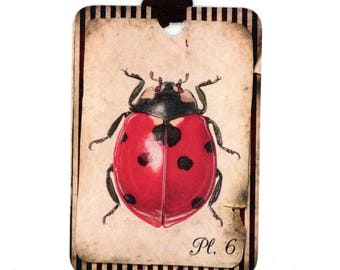 Ladybug Gift Tags , Ladybird Tags , Red Bug , Insect Tags , Vintage Style , Rustic Tags , Shabby Tags , Bluebird Lane Tags