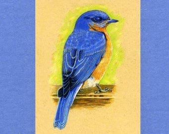 Blue Bird ACEO ATC Artist Trading Card
