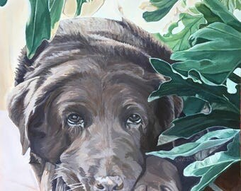 """5 x 7 dog Greeting Card """"Sweet Summer's Bliss"""""""