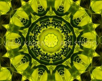 Instant Digital Download Green Mandala Art. Printable Mandala. DIY Home Decor. Digital Design. Meditation Print. Geometric design.