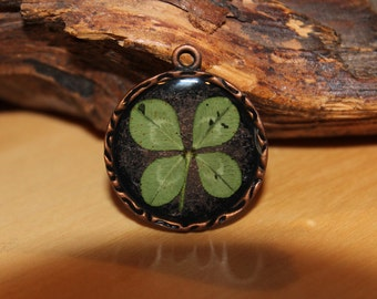 Real Four Leaf Clover charm for Good Luck