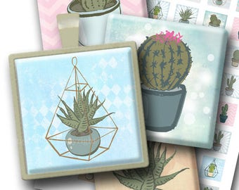 Succulents 1 inch squares printable digital collage sheet. Floral download images for magnets, cards, scrapbooks, jewelry. Square printables
