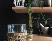 vintage pair of wicker rattan glass mug set / coffee mug / cup holders / inserts