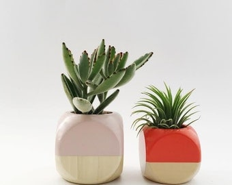 Geometric Planter // Colorblock + Wood (Plant Not Included)