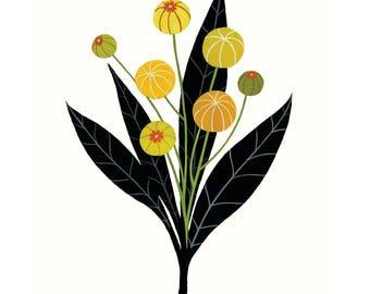 Black & Gold Seed Pods - Fine Art Print 8x10