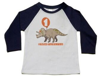 Dinosaur Birthday Shirt - 1st  Birthday T-Shirt (2nd, 3rd, 5th,etc) - Dinosaur Birthday Party - Personalized Triceratops Shirts - Raglan Tee