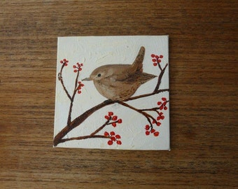 Little brown wren  coaster