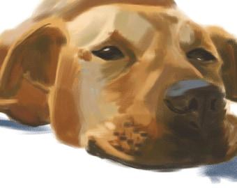 Pet Memorial | Custom Pet Portrait | Pet Portrait | Pet Paintings | Pet Loss Gifts | Pet Painting | Custom Pet Painting