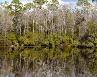 Lake Reflection Photograph // Nature Reflection Print // Woodland Photograph