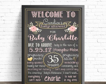 Baby Shower Chalkboard Sign / Floral Baby Shower Decorations / Baby Shower Gift / Pink and Gold Nursery Decor / Girl Nursery Printables