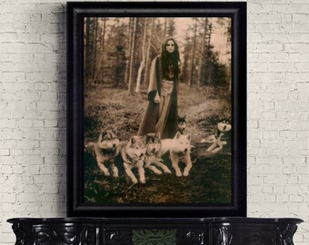 Vintage Siberian Huskies Photography      8 X 10 Print Lady of the Forest