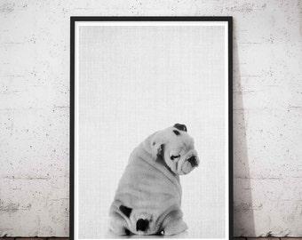 Dog lover gift | Etsy