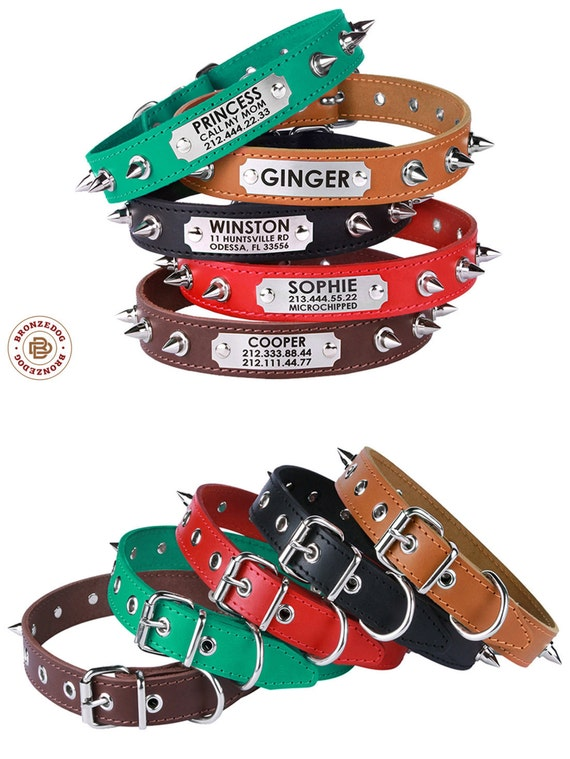 Spiked Leather Dog Collar Personalized Small Large Red Brown Black Green Pitbull AmStaff Bulldog