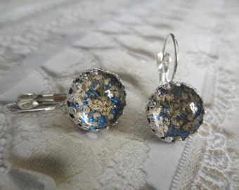 Queen Anne's Lace Atop Royal Blue Background Beneath Glass-Crown Bezel Leverback Pressed Flower Earrings-Symbolizes Peace-Gifts Under 30
