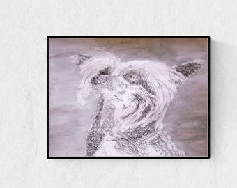Handmade illustration: Chinese Crested Dog, original art, hand-signed, unique piece, free dispatch