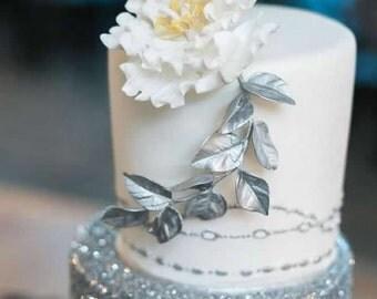 Silver Cake Decorating Glitter Spray : Silver Cake Glitter Cake Decorating Edible Topping Metallic