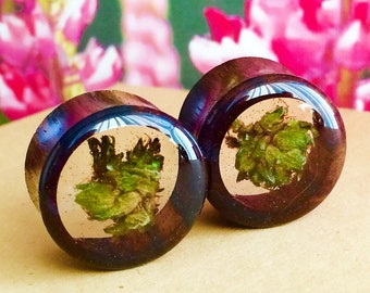 Healing Flower Plugs-Weed Plugs-Cannabis-Marijuana-Organic Wood Plugs-Weed-Stoner Plugs-Wood Plugs-Plugs-Gifts for Her-Gifts for Him