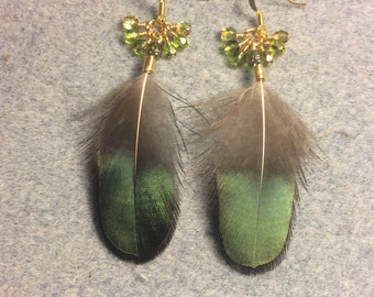 Iridescent green Lady Amherst feather earrings adorned with dangling green Czech glass beads.