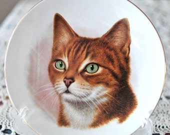 """Vintage 7"""" Burleigh Ware Porcelain Tabby Cat Collector Plate / Animal Decorator Plate / Ginger Cat Decorator Plate / Marmalade Cat Painting"""