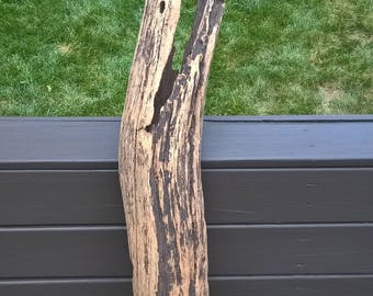Driftwood Hollow Log Hardwood Terrarium Reptile Habitat. Fish Tank Decor 962