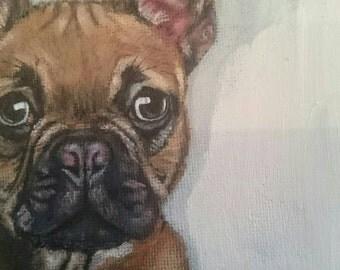 Pet portrait 24 x18 inch deep edge canvas