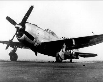 16x24 Poster; Jug, The P-47 Thunderbolt
