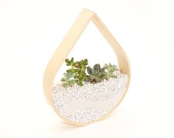 Raindrop Planter Terrarium • Bent Wood