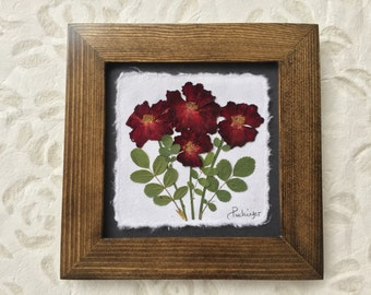 Real Pressed Red Rose Picture. Available in Black and Walnut Frame. 8x8 | Pressed Flower Art | Made in Canada | Gift for her | Anniversary