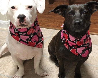 Valentine bandana/scarf for pet dog cat puppy or kitten in size extra small  small /medium or large /extra large