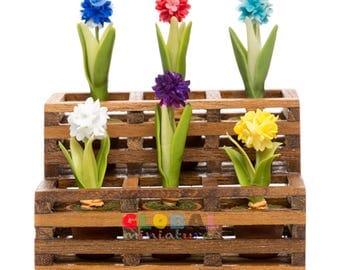 Dollhouse Miniatures Colorful Allium Flower in Flowerpot on Wooden Shelf