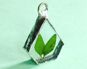 Pressed leaf terrarium necklace