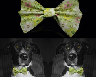 Greenflower Dog Bow Tie - Green
