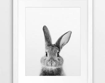 Rabbit Print, Bunny Rabbit Art, Black And White Animal Print, Rabbit Wall Decor, Bunny Print, Woodland Animals, Nursery Decor, Printable Art