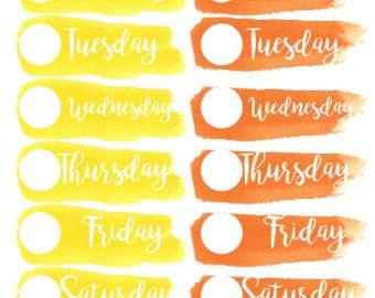 Planner Midis - Watercolour Date Covers - Warm Colours