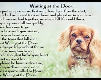 Ruby Cavalier King Charles Spaniel Dog Memorial Magnetic Sympathy Card Gift