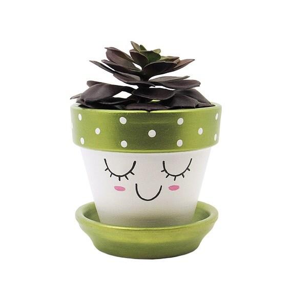 Cute Planter Face Planter Terracotta Pot Succulent Planter