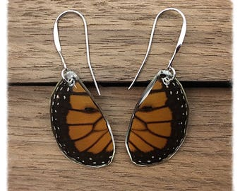 Real Butterfly Wing Jewelry - Earrings - Monarch- Handcut Teardrop-Orange and Black- Handmade- Hind Wing- Insect Jewelry