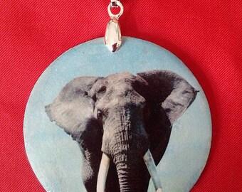 African elephant (photos)