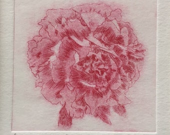 Peony Print - Original Limited Edition Etching