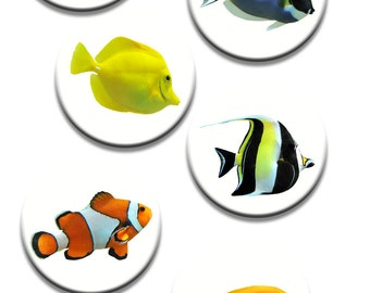 A pack of 6 fish Pattern weights Ideal for weighing down patterns on delicate fabrics no need for pins TV sewing Bee