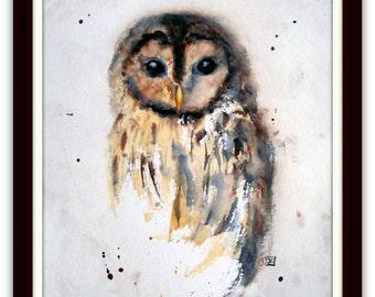 Animal Painting - original watercolour - Owl - Llittle Brown Owl - Size 30x40 cm