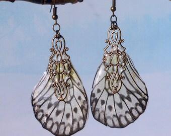 Earrings Real Wings Butterfly Tropical butterfly earrings Unique jewelry Statement earrings  Paper Kite butterfly Jewelry black white  Gift