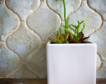 White cube succulent arrangement