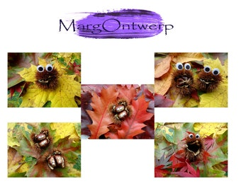 Set of 5 postcards from the series Eyes see you in... autumn