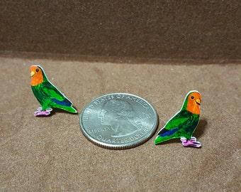 Lovebird Parrot Stud Earrings