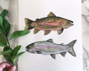 Rainbow Trout - Art Print