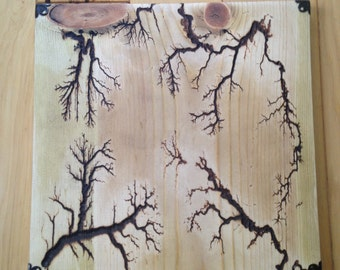 Fractal / Lichtenberg / Electrocuted / Wood Wall Art